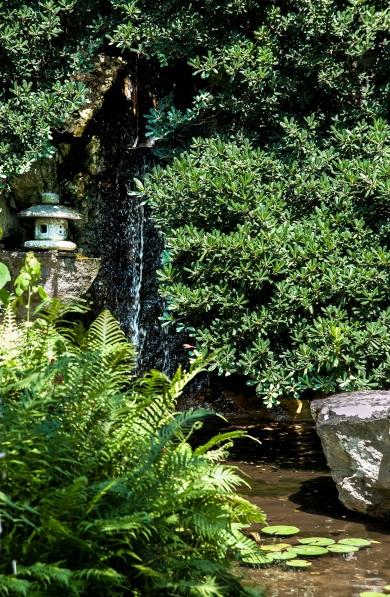 Zilker Park Isamu Taniguchi Japanese Garden