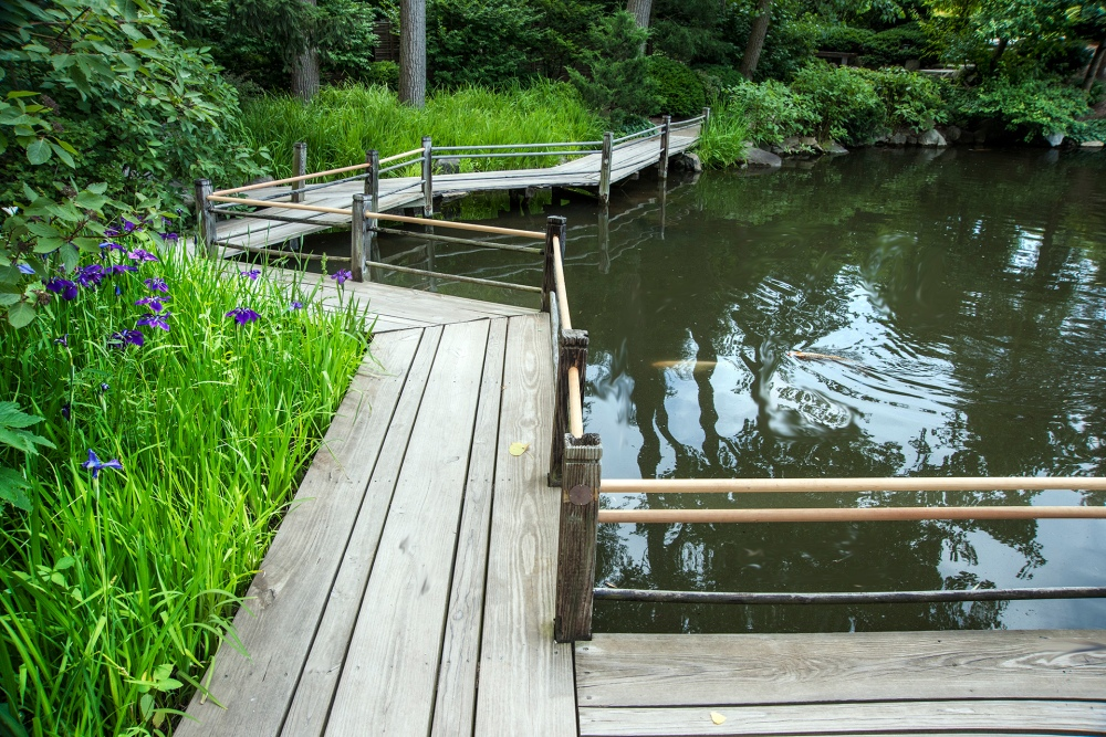 Anderson Japanese Gardens in Rockford, Illinois, provides a place of peace (6/6)
