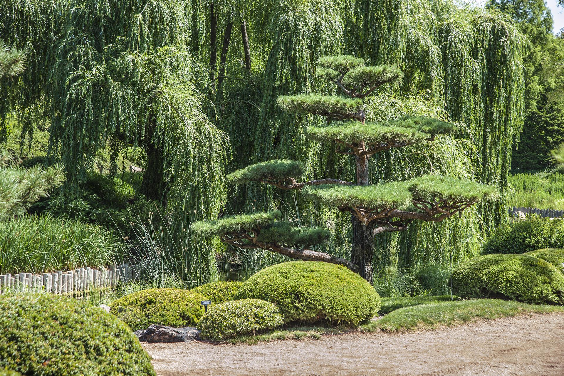 Chicago Botanic Garden In Glencoe Where East Meets