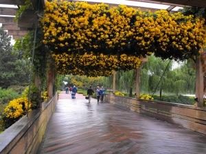 bridge with seasonal floral display