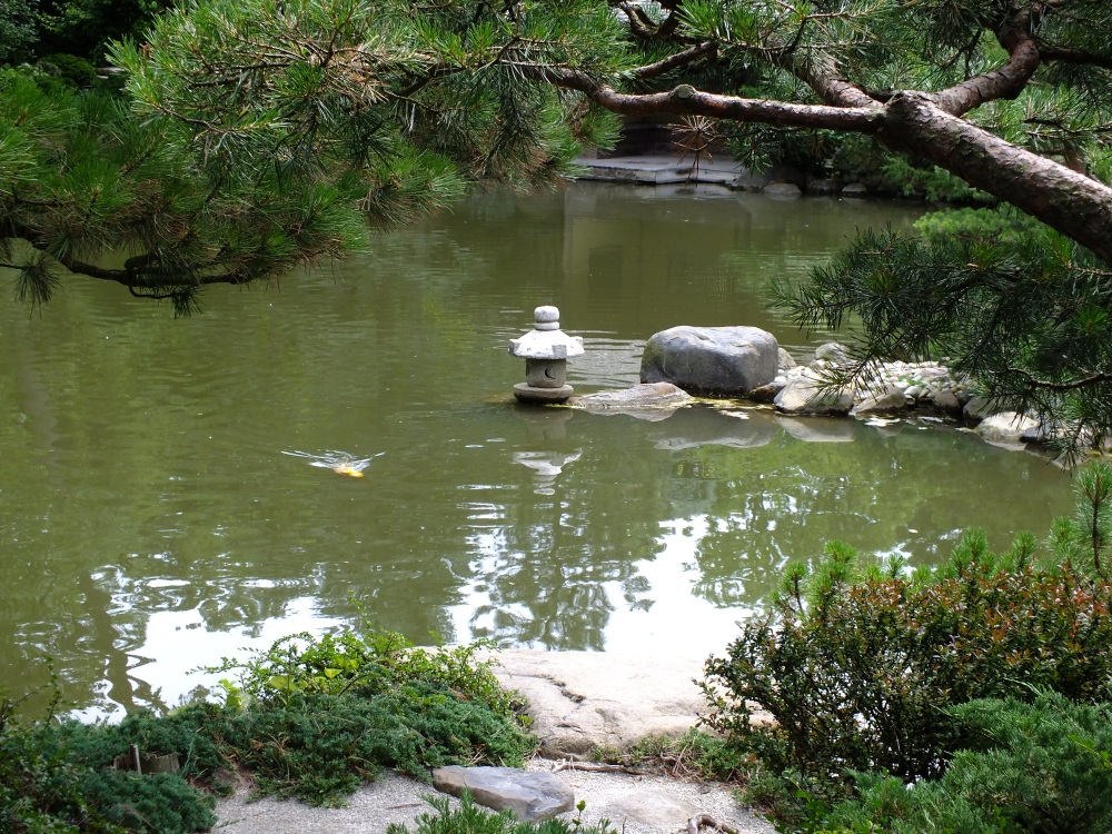 Anderson Japanese Gardens in Rockford, Illinois, provides a place of peace (2/6)