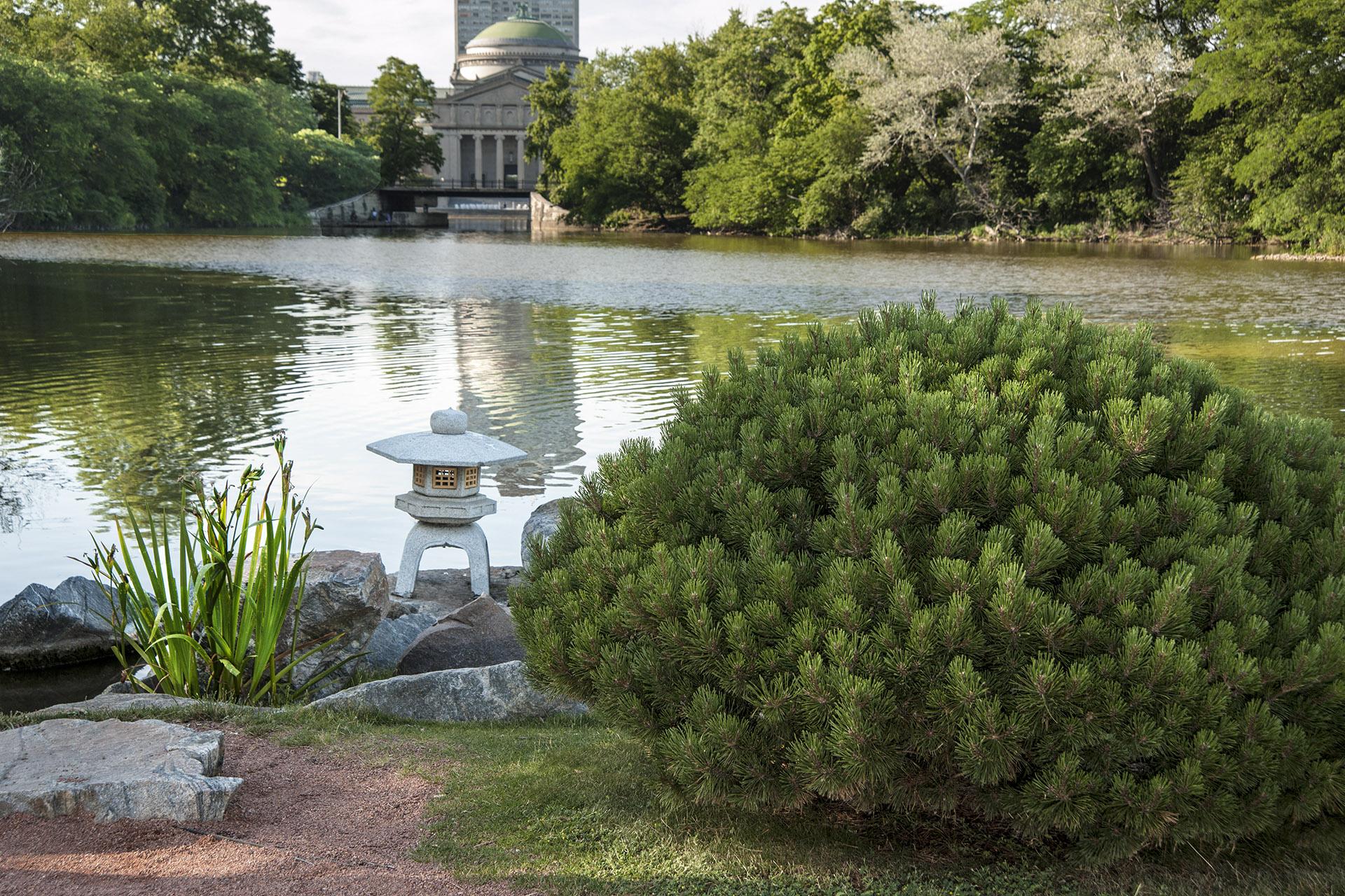 osaka garden u s japanese gardens