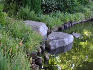 Osaka Garden pond detail