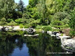 Denver pond