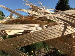 bamboo wave