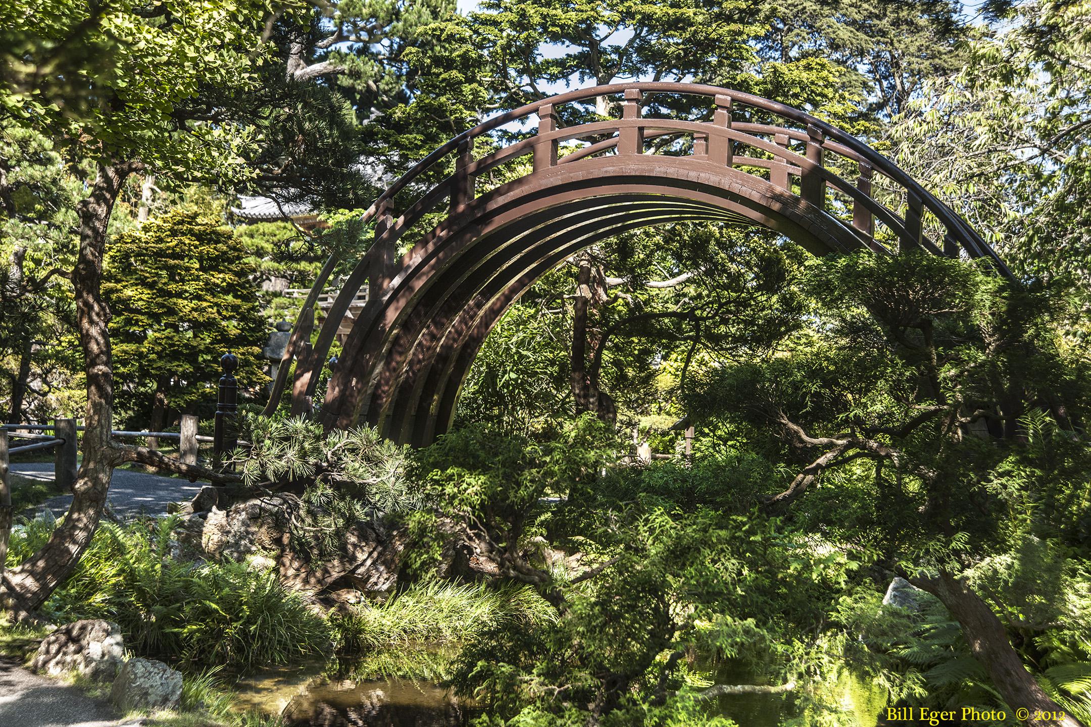 U s japanese gardens across the continental united for Japanese tea garden hours