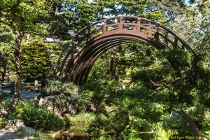 The Japanese Tea Garden in San Francisco's Golden Gate Park dates back to 1894. photo by Bill F. Eger