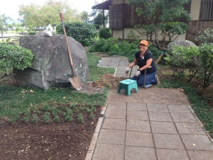 Mel at the end of this job weeding and replanting dwarf mondo grass (K.T. Cannon-Eger)