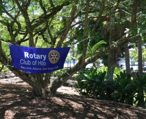 Rotary Club of Hilo joined in the all-day bamboo event