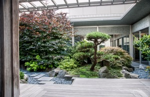 Japanese roof top garden