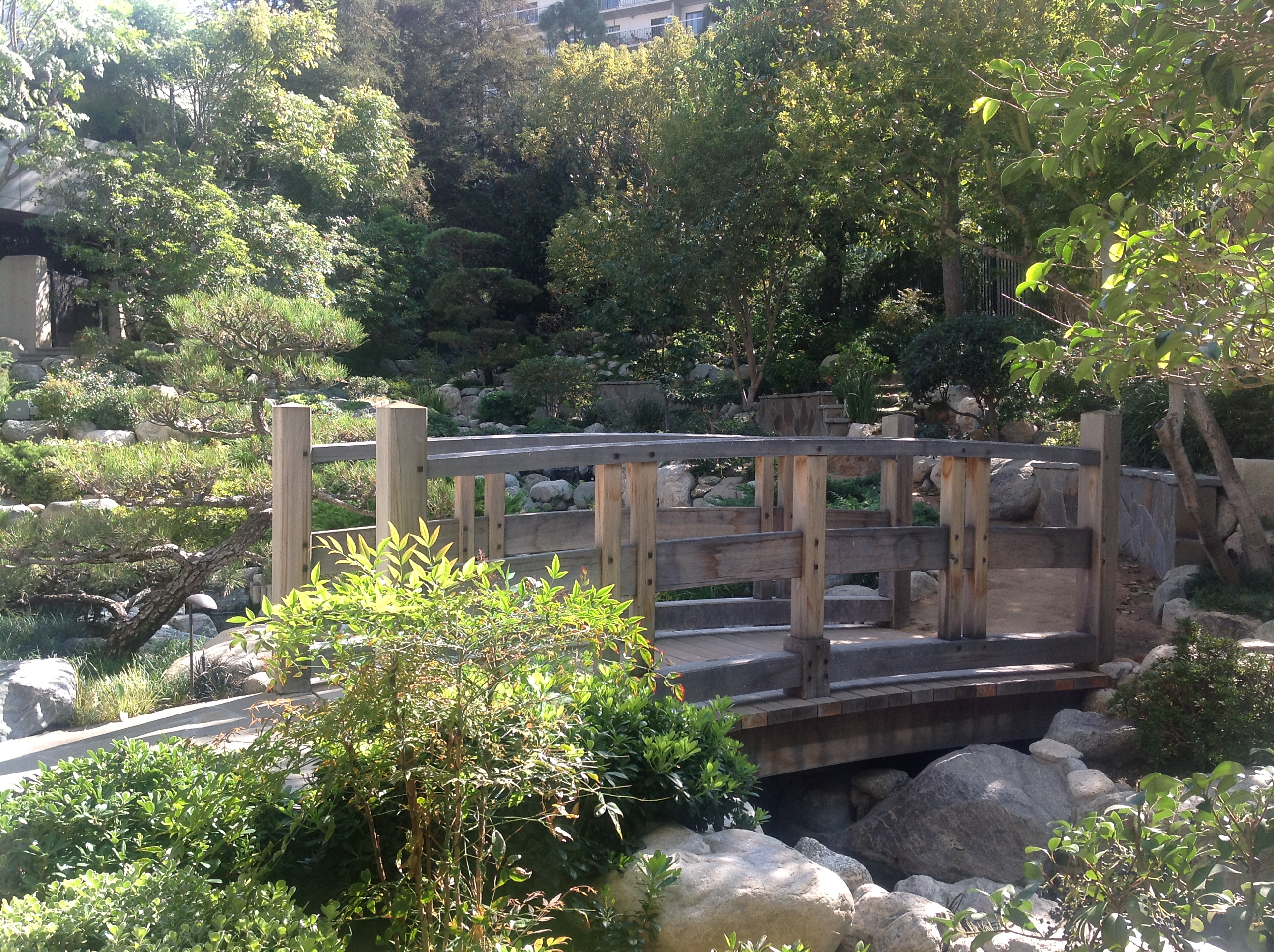 Short Walk In Los Angeles Yields Several Gardens U S Japanese Gardens
