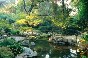 Descanso Gardens in Flintridge near Los Angeles will host the North American Japanese Garden Association regional conference in January 2017 Photo courtesy of Descanso Gardens