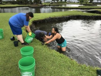 UH-Hilo students join in the fun at Waihonu to remove decades of accumulated muck and search for buried treasure.