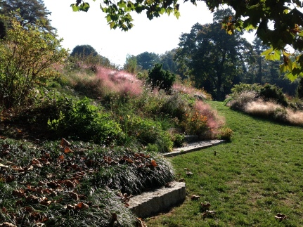 stone edging and colorful grasses